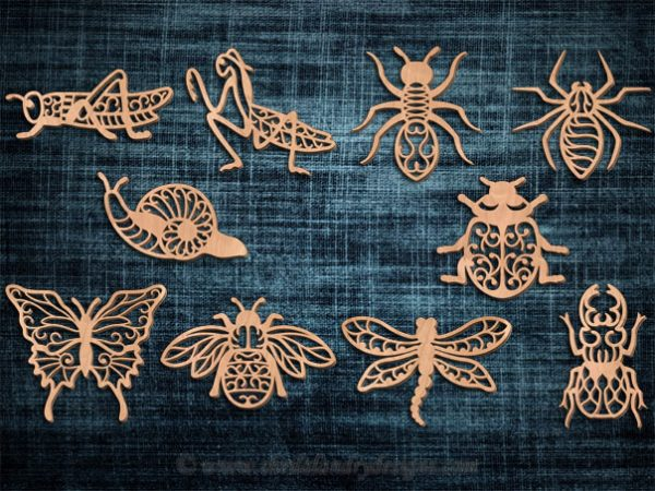 Insects Laser Pattern